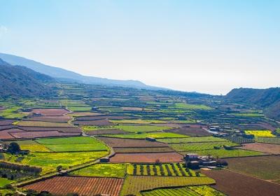 Agenzia/operatore Turistico Bepantelleria